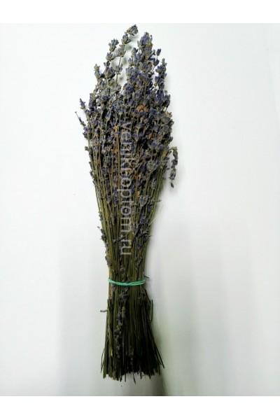 Сбор трав «Лаванда»