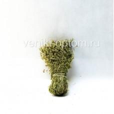 Сбор трав «Чабрец»