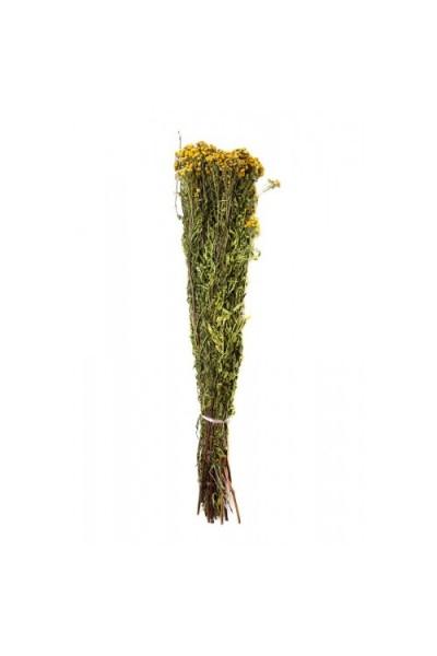 Сбор трав «Пижма»